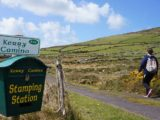 kerry-camino-walking-festival-irelandways