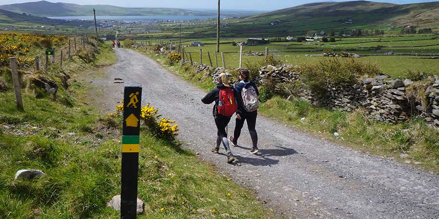 walkers-on-the-kerry-camino-walking-festival-trail-ireland