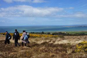 Walkers---Kerry-Camino---IrelandWays