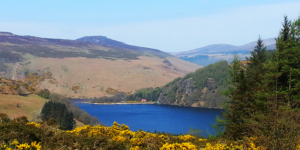 Wicklow-Way-Loch_Dan-Irelandways