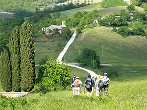 camino-guided-tours-caminoways