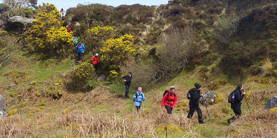 charity-treks--for-groups-ireland-ways