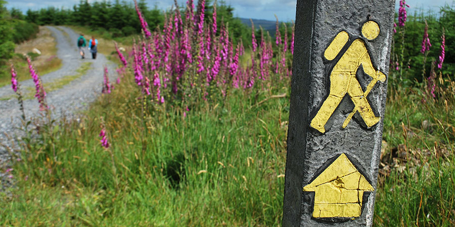 yellow-arrows-marking-hiking-trails-irelandways