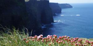 wild-atlantic-way-road-trip-irelandways