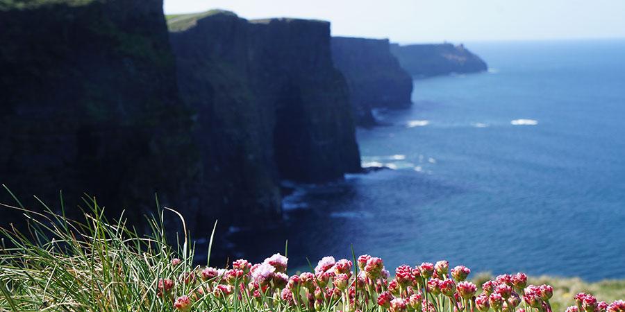 cliff-of-moher-the-burren-way-ireland-ways