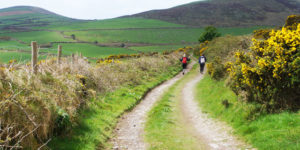 dingle-way-wild atlantic way-hiking-Ireland-ways