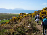 inch-beach-kerry-camino-irish-trails-irelandways