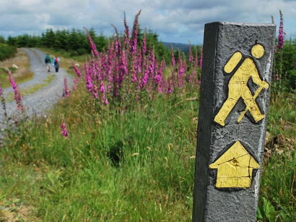 walkers-hiking-wicklow-way-irelandways