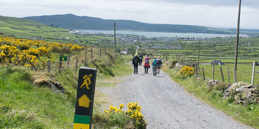 group-trip-in-ireland-ways