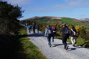 kerry-camino-the-Dingle-Way-Irelandways