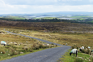 view-clew-bay-cycling-greenway-ireland-ways
