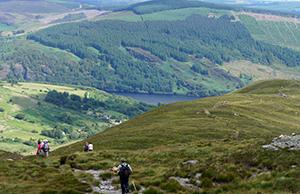 walking-holiday-ireland-wicklow-irelandways