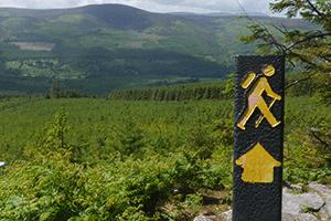 walking-sign-wicklow-way